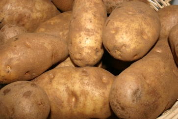 Russet-Potatoes-morgue