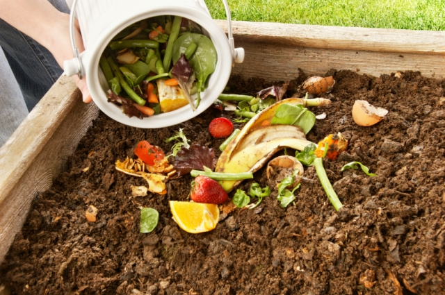 photo-faire-son-compost